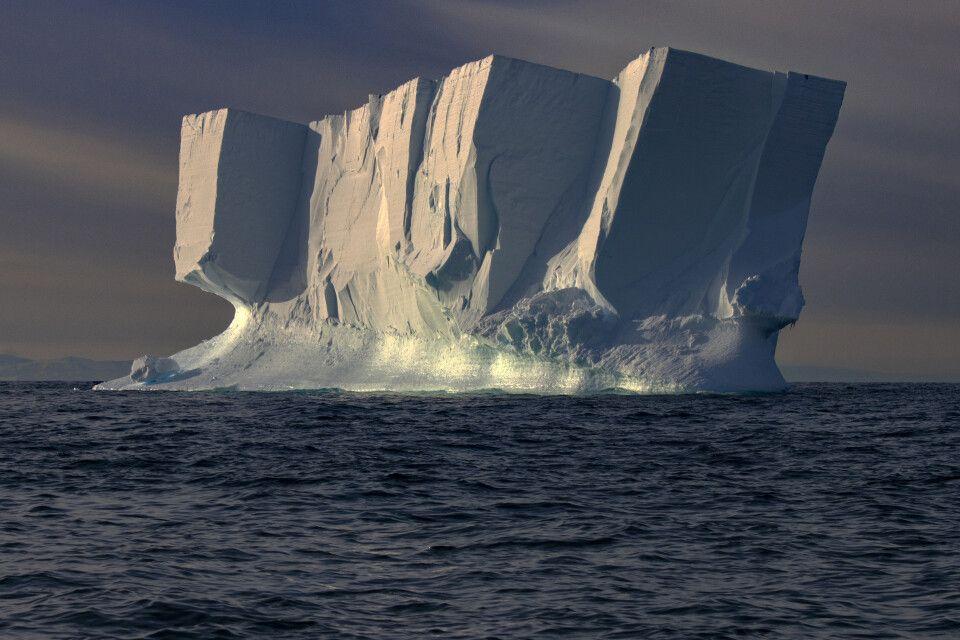 17. Platz: Antarktis, Dorothea Penselin