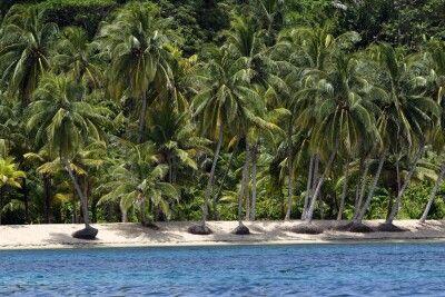 Strand auf den San Blas Inseln vor Panama