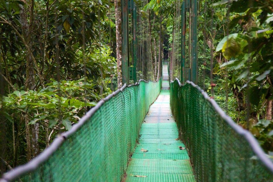 Hängebrücken Monteverde