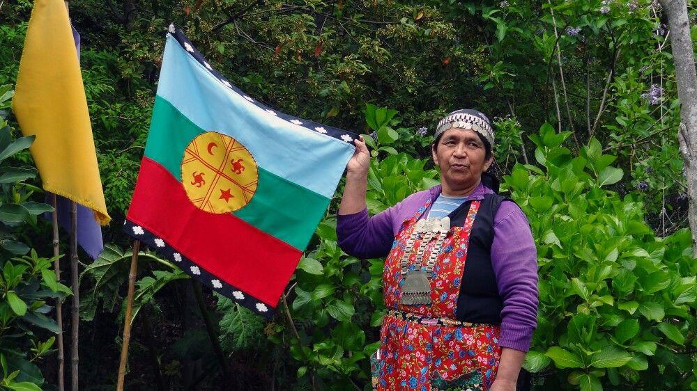 Mapuche-Indigena