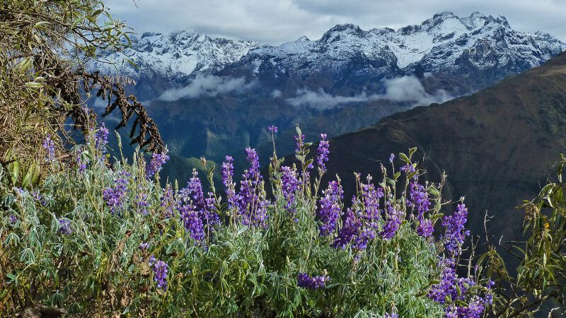 Anden-Landschaft © Diamir