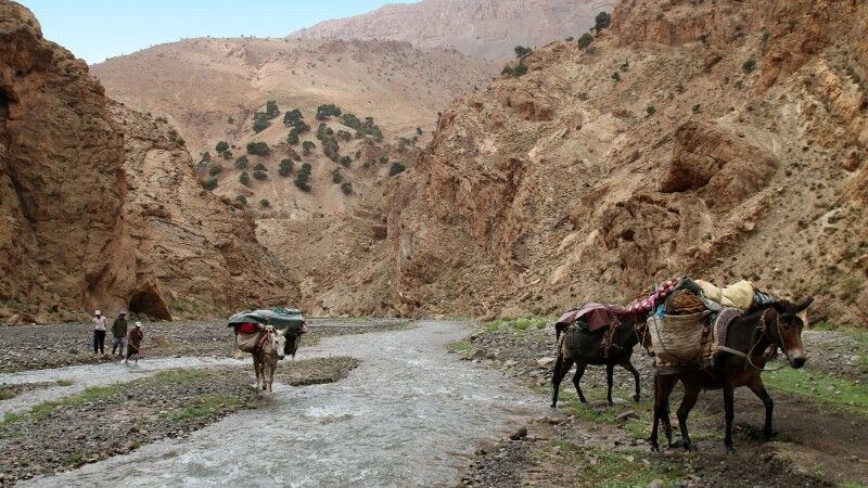 Flussquerung a la marocain © Diamir