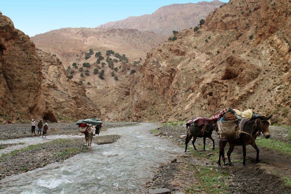 Flussquerung a la marocain