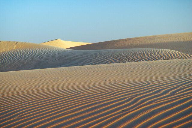 In der Wüste Mauretaniens