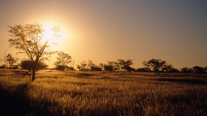Sonnenuntergang in der Kalahari © Diamir