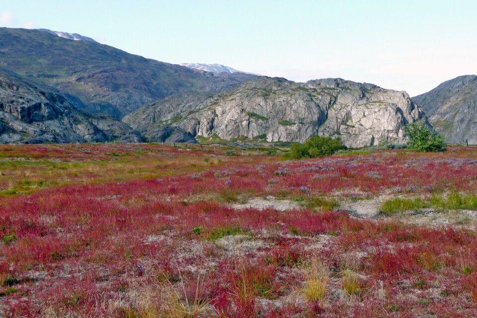 """Wanderung im """"Tal der tausend Blumen"""""""
