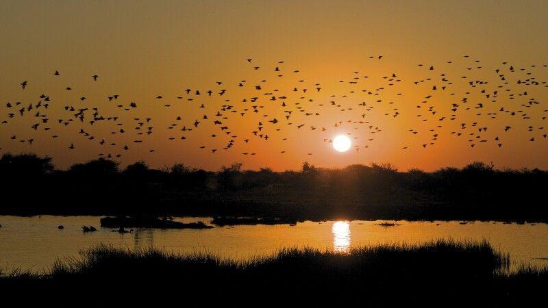 Abendstimmung über dem Okavango © Diamir
