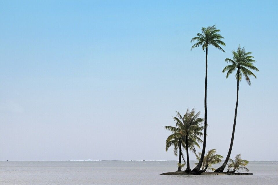 Insel im Meer