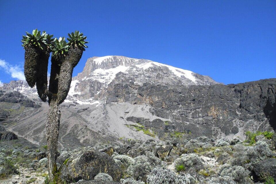 Barranco-Tal