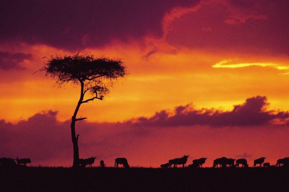 Grandioser Abendhimmel