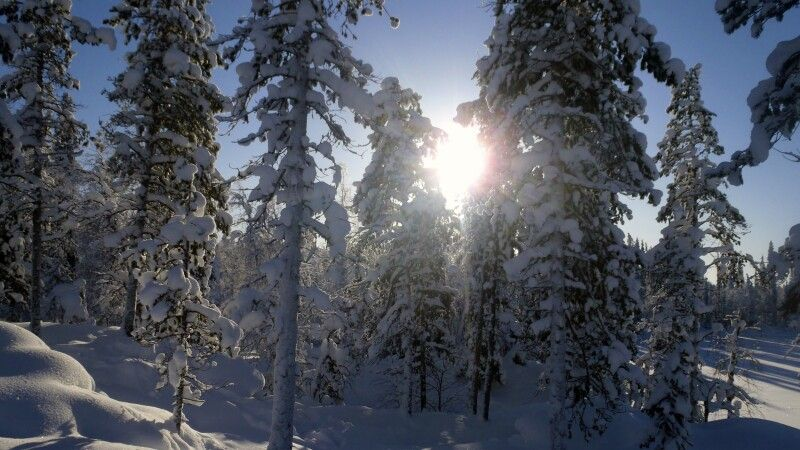 Winterlandschaft © Diamir