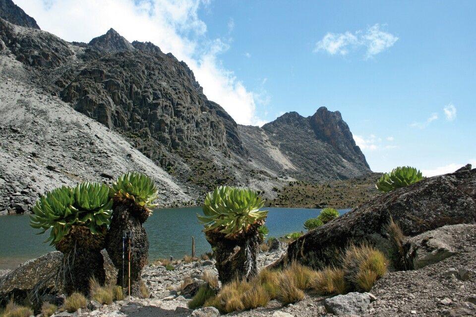 Traumhafte Berglandschaft am Mount Kenya