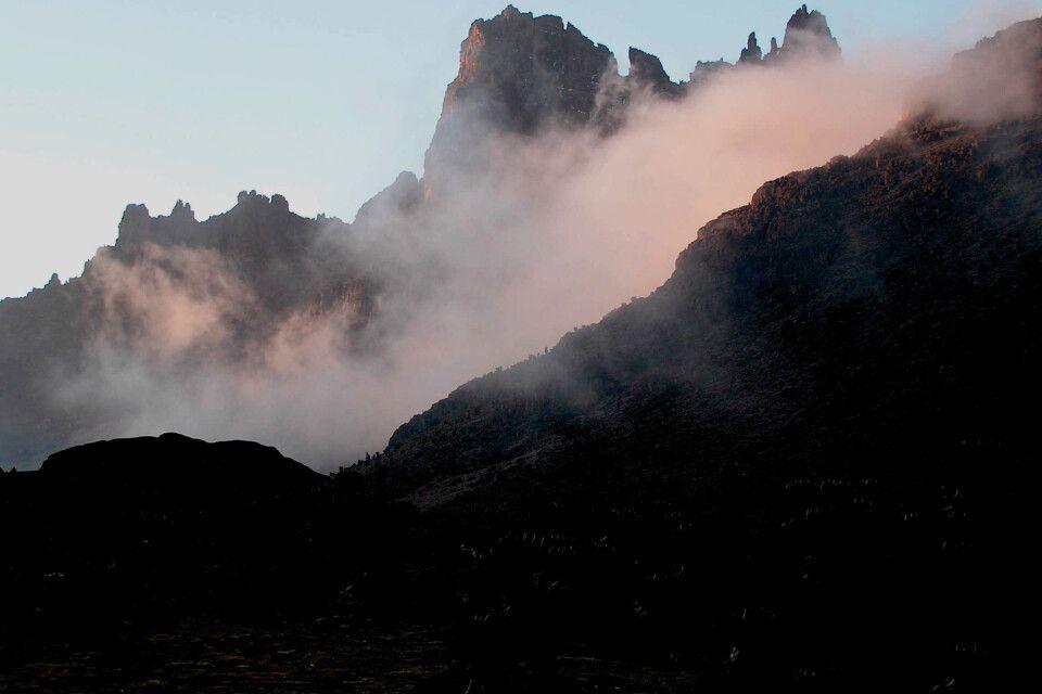 Mystische Stimmung am Mount Kenya