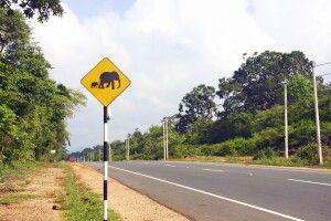 Straßenschild auf dem Weg von Colombo nach Dambulla