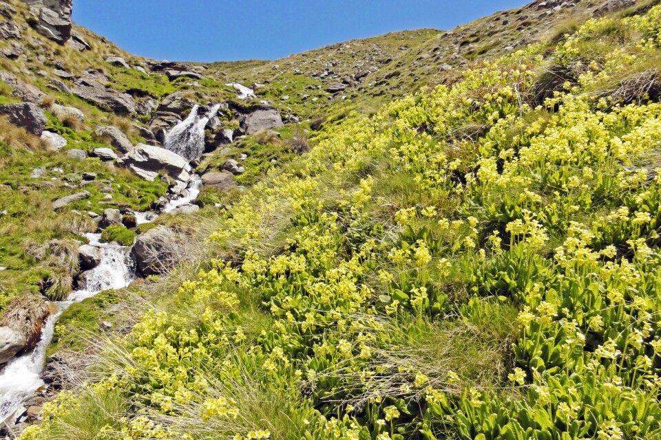 Unterwegs in der Sierra Nevada