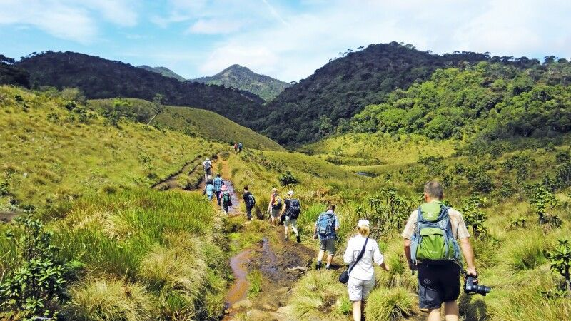 Wandern in den Horton Plains © Diamir