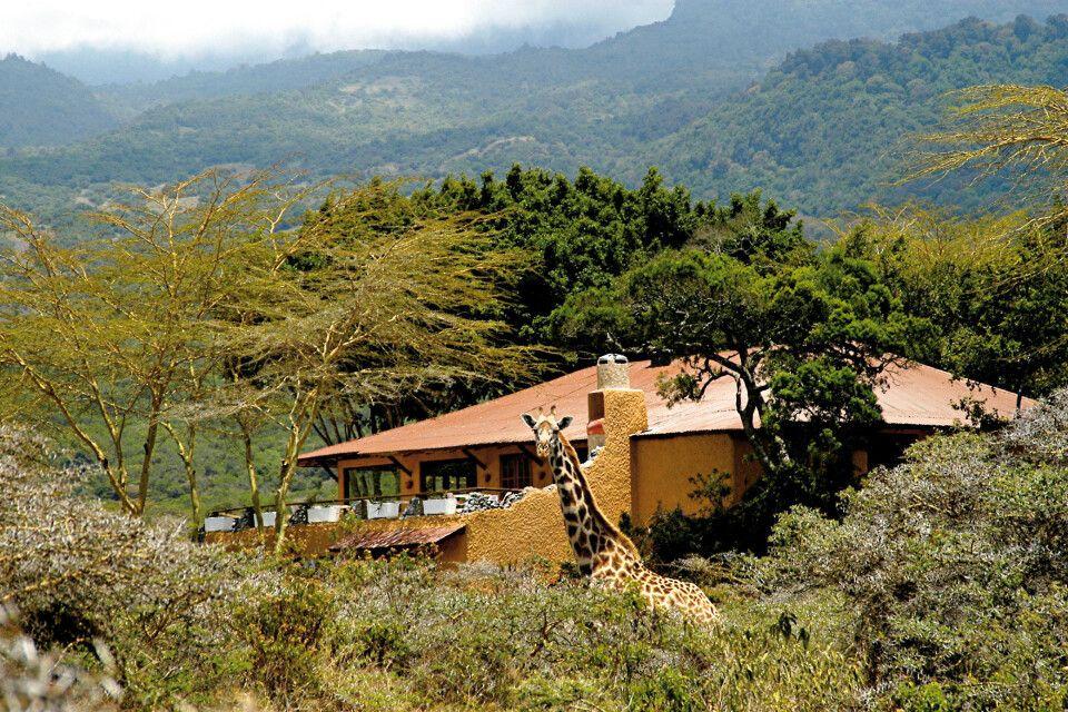 Hatari Lodge Aussen