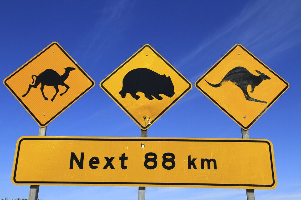 Roadsign Outback