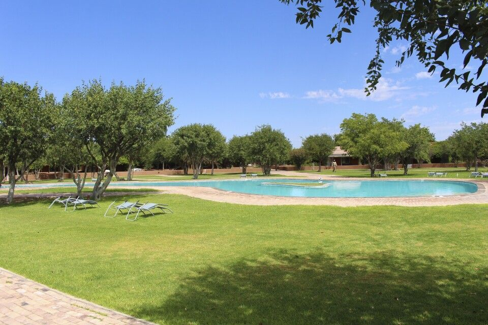 Pool Damara Mopane Lodge