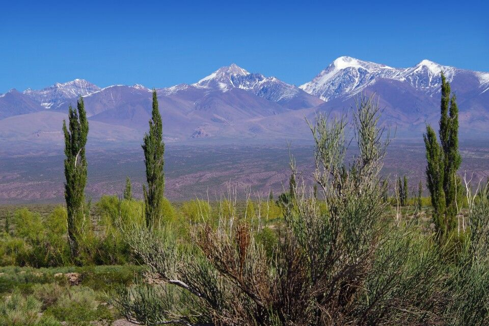 Unterwegs in der Provinz Mendoza