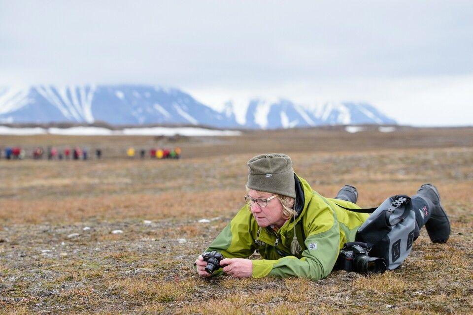Insel der Kontraste: grüne Tundra mit Blümchen und Wandergelegenheiten en masse