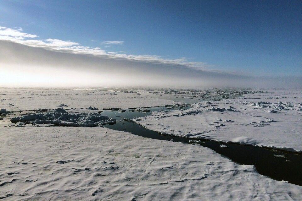 Mitternachtssonne: Spitzbergen im Juni bedeuten 24 Stunden Tageslicht