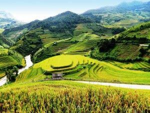In den Bergen von Mu Cang Chai