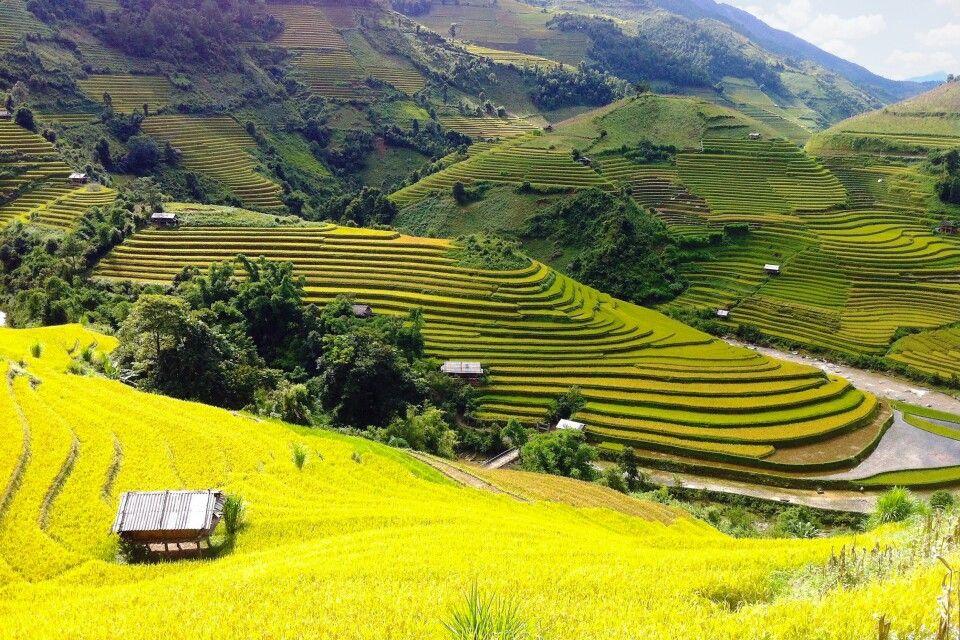 Wandern in der Bergen von Mu Cang Chai