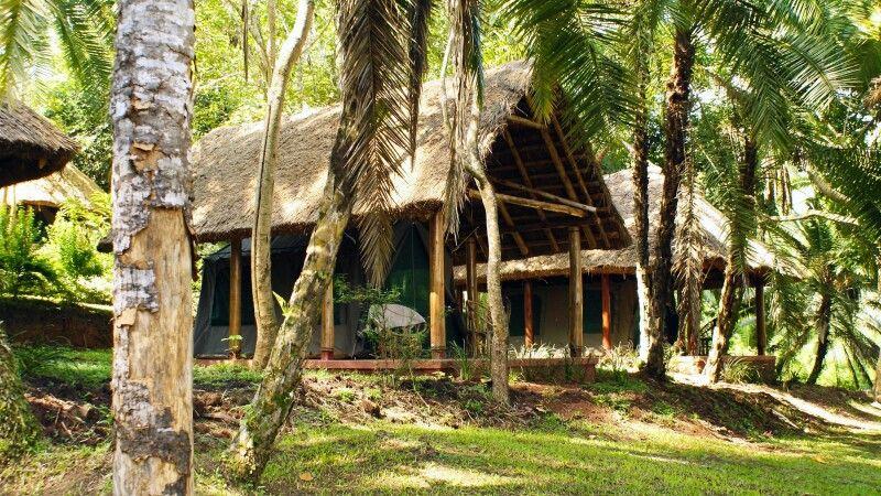 Hauszelt des Kibale Forest Camps © Diamir