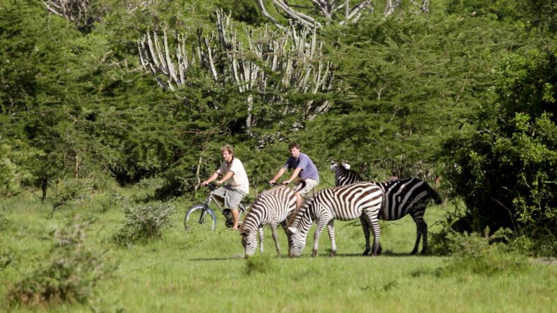 Fahrradsafari im Lake Mburo NP © Diamir