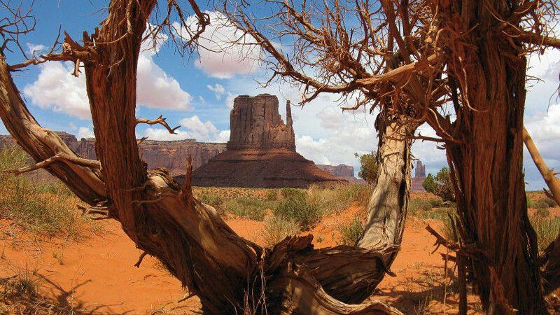 Im Monument Valley © Diamir