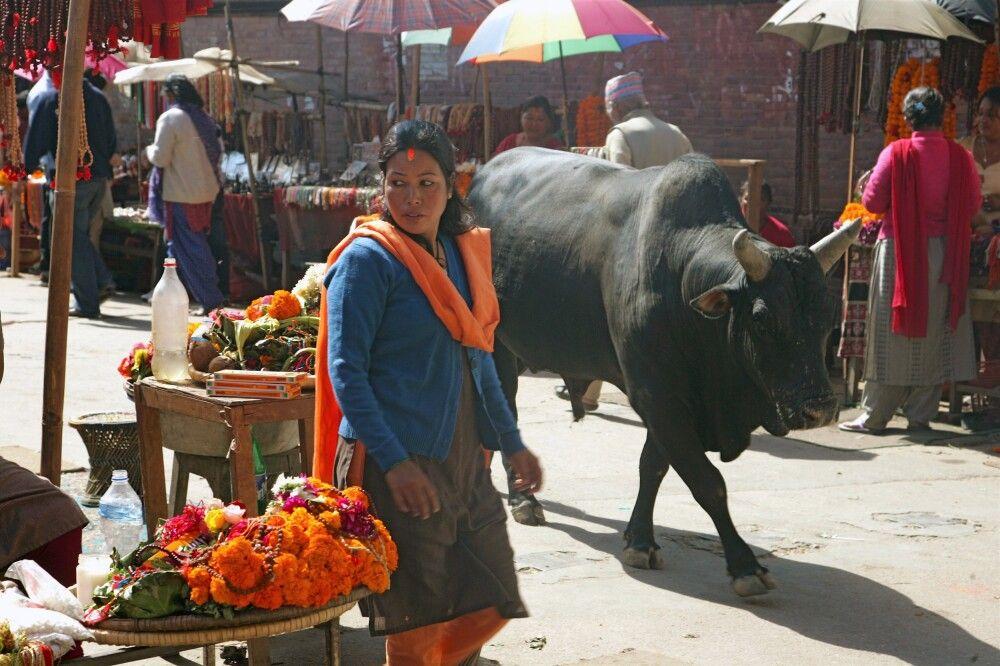 Basarstraßen in Kathmandu