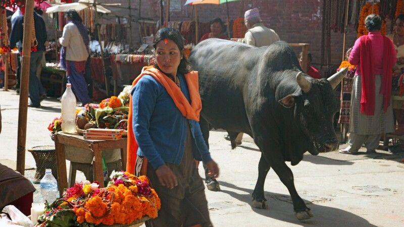 Basarstraßen in Kathmandu © Diamir