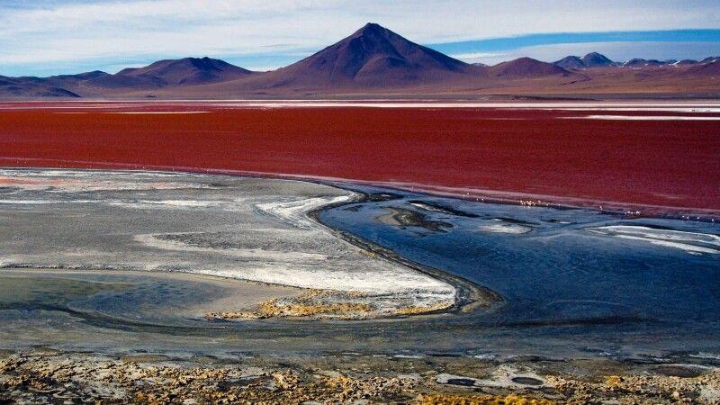 Rotgefärbte Laguna Colorada © Diamir