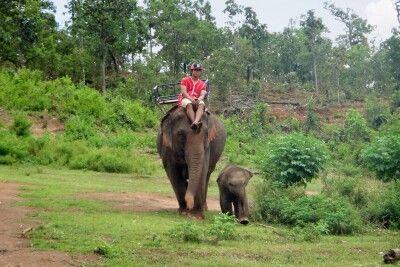Elefantencamp in Nordthailand