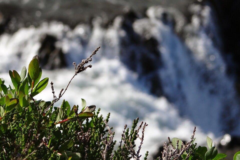 Wasserfall bei Borganes