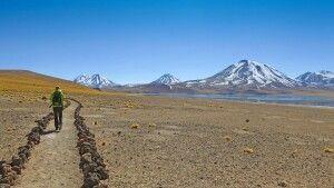 Trekking in der Atacama-Wüste