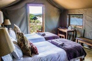 Kinderschlafzimmer des Familienzeltes in der Buffelsdrift Game Lodge