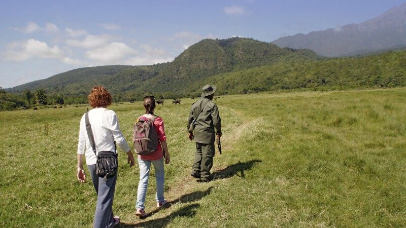 Wandersafari im Arusha Nationalpark © Diamir