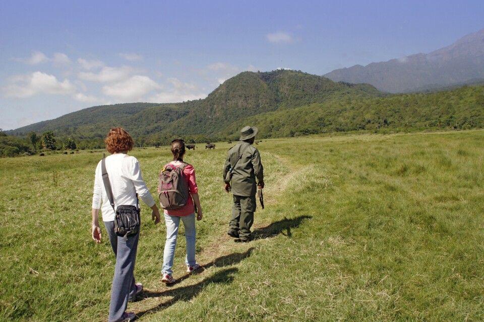 Wandersafari im Arusha Nationalpark