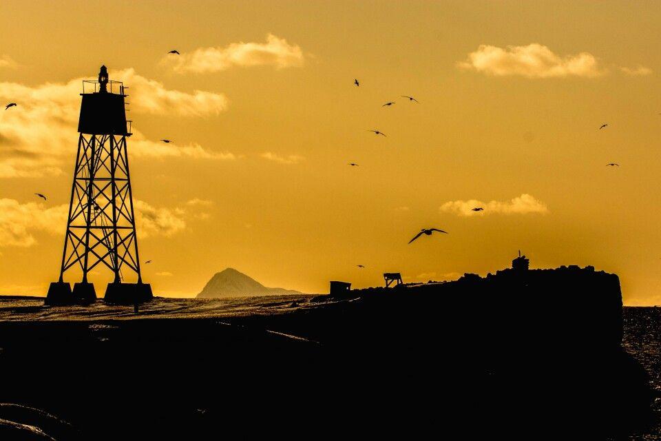 Mast im Schein der Abendsonne