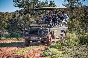 Unterwegs im Safarifahrzeug in der Nähe der Buffelsdrift Game Lodge