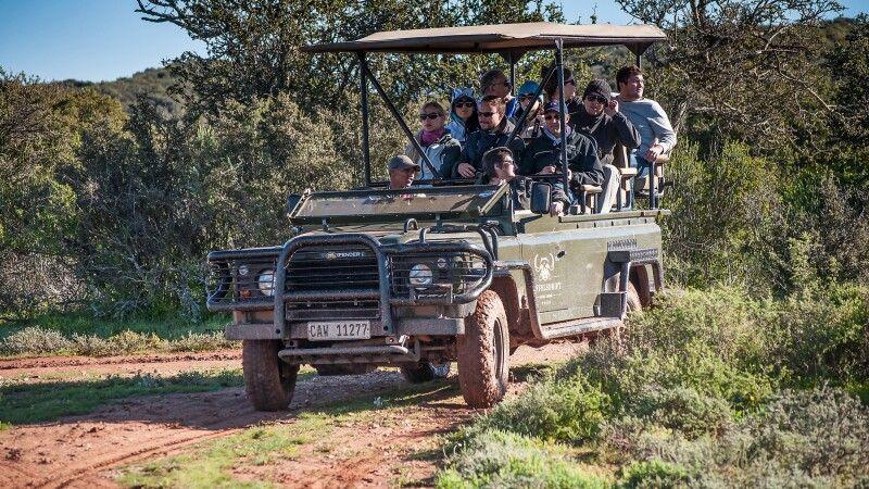 Unterwegs im Safarifahrzeug in der Nähe der Buffelsdrift Game Lodge © Diamir