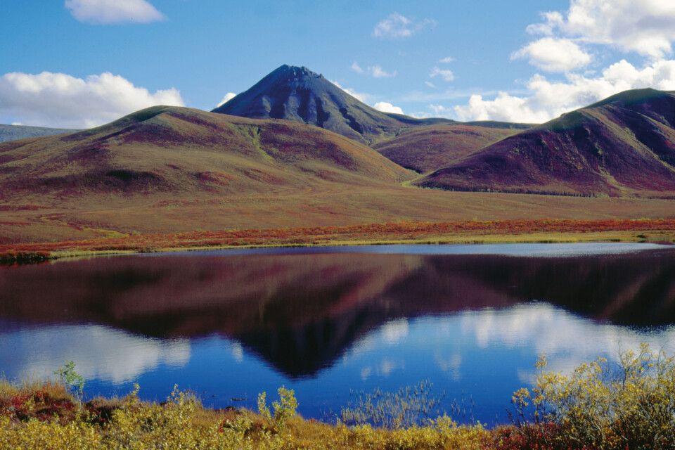 Herbststimmung im Yukon