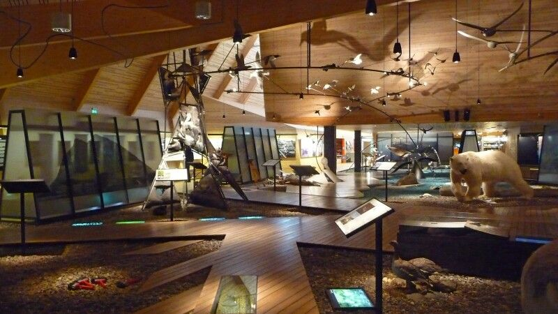 Im Museum von Longyearbyen © Diamir
