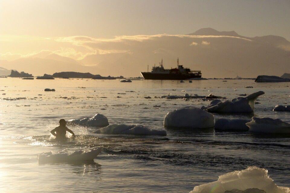 Polar Plunge - Baden in der Antarktis