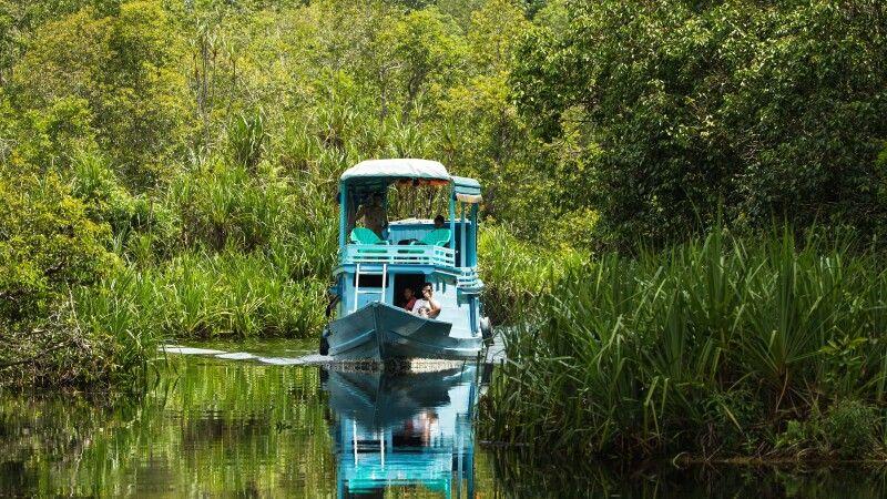 Klotok auf dem Weg in den Tanjung Puting NP © Diamir