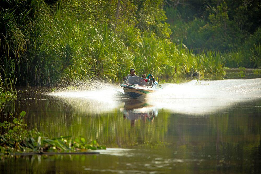 Motorboot im Tanjung Puting NP