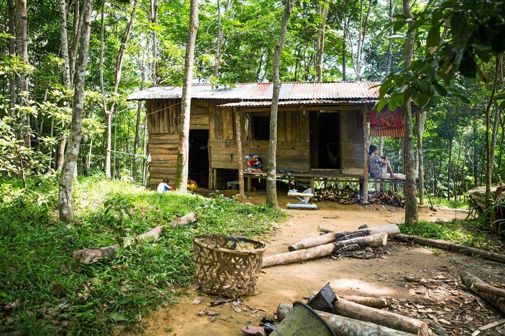 Haus im Gunung Leuser NP