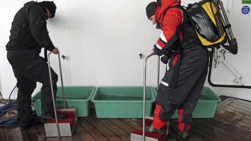 Nach der Rückkehr an Bord werden die Stiefel gesäubert © Diamir
